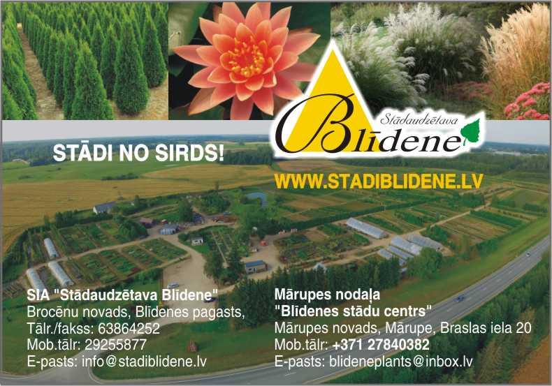 Blidene